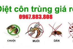 Dịch vụ phun thuốc diệt muỗi tại Quảng Nam